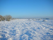 Dec 2012: Snow on Crookham Common